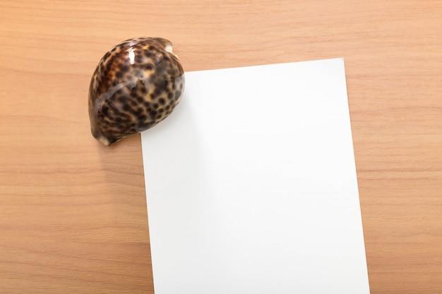 Zomervakantie sjabloon, lege brief met zeeschelpen