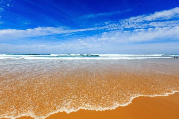 Zomerzandstrand met surfgolf (algarve, costa vicentina, portugal).