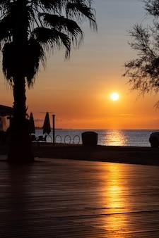 Zon stijgt boven de zee in de ochtend. uitzicht vanaf een promenade met palmen.