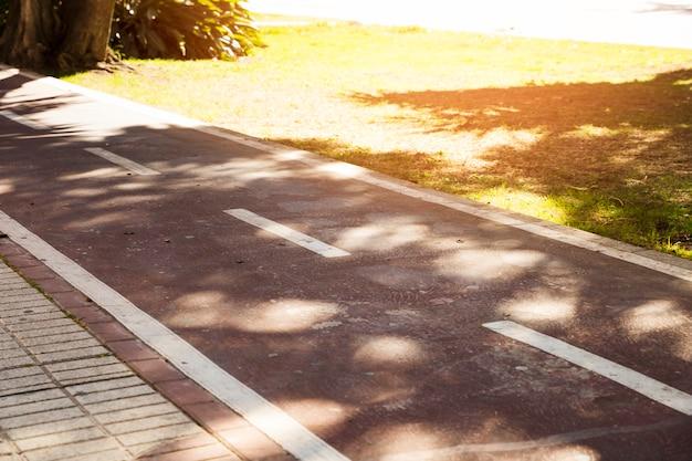 Zonlicht over de witte markering op asfalt in het park