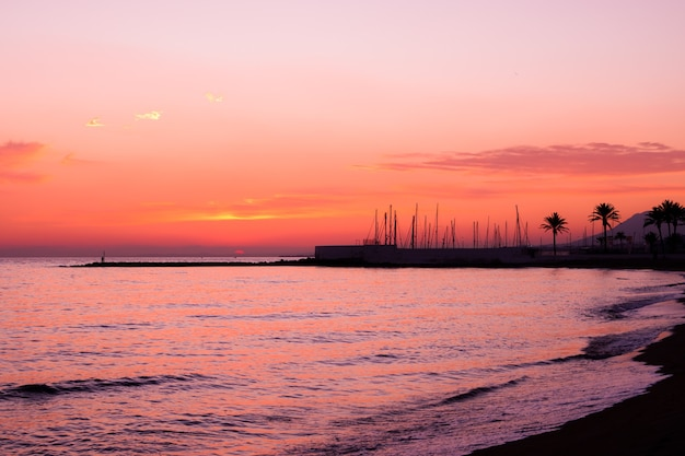 Zonneschijn aan de zeekust, de natuur is geschilderd in oranje tinten van de zon. natuur achtergrond.