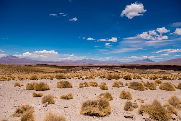 Zonneschijn boliviaanse woestijn op de achtergrond van hoge rotsachtige bergen