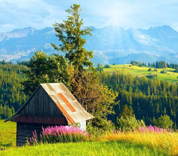 Zonneschijn boven de buitenwijken van het zomerse bergdorp met roze bloemen en houten schuur vooraan en tatra-gebergte achter (gliczarow gorny, polen)