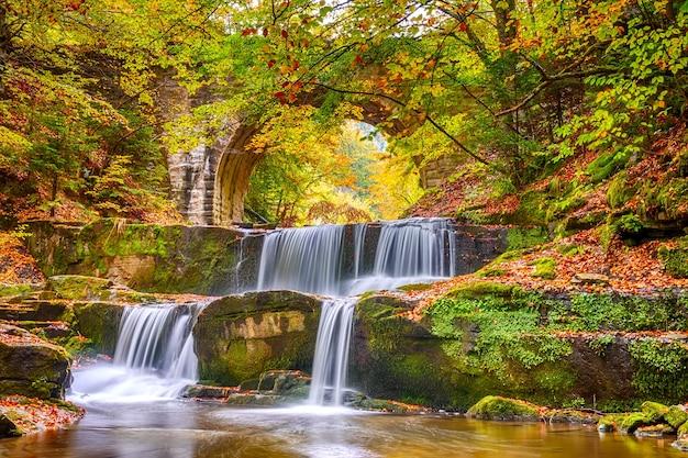 Zonnig bos en herfstdag. kleine rivier met verschillende natuurlijke stroomversnellingen van een waterval
