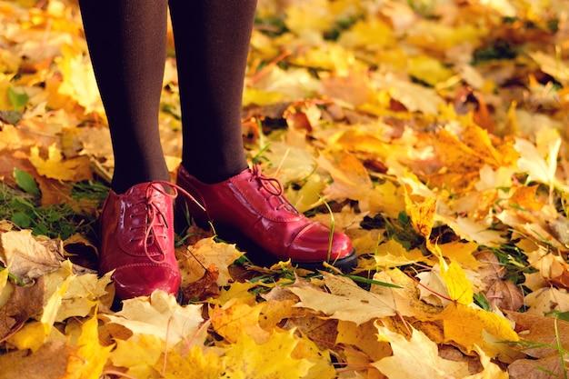 Zonnig oktoberweer.