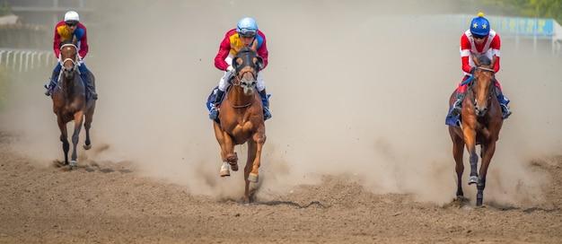 Zonnige dag op de hippodroom. drie paarden rennen op volle snelheid en trekken een stofwolk op
