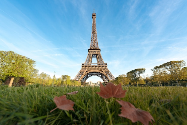 Zonnige ochtend in parijs en de toren van eiffel met esdoornblad in parijs, frankrijk.