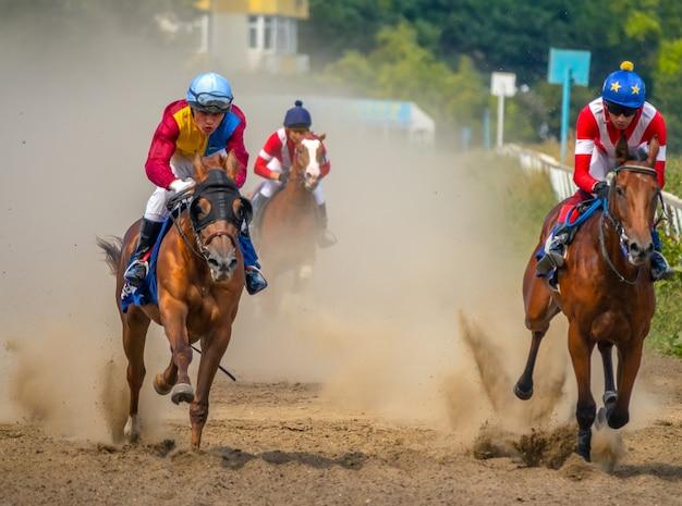 Zonnige zomerdag op de hippodroom. drie paarden rennen op volle snelheid en trekken een stofwolk op