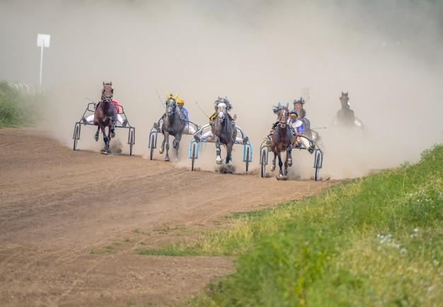 Zonnige zomerdag op de hippodroom. zeven paarden die aan karren worden getuigd, zijn ren