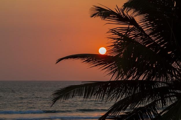 Zonsondergang aan de oever van de indische oceaan