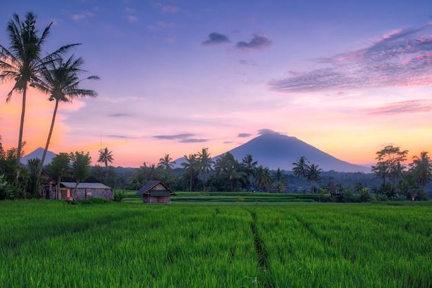 Zonsondergang bij de rijstvelden in bali