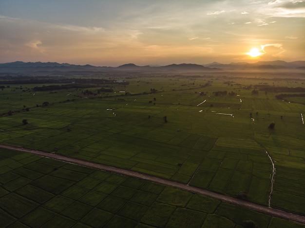 Zonsondergang bij landbouw groen padieveld