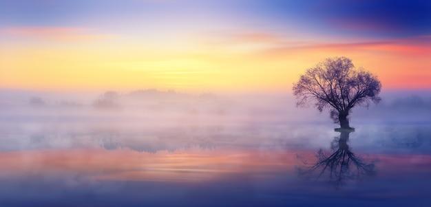 Zonsondergang en mist op het meer