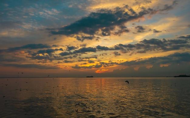 Zonsondergang en zeemeeuw bij bangpoo