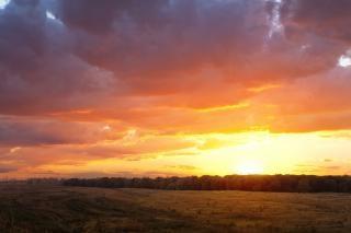 Zonsondergang, geel