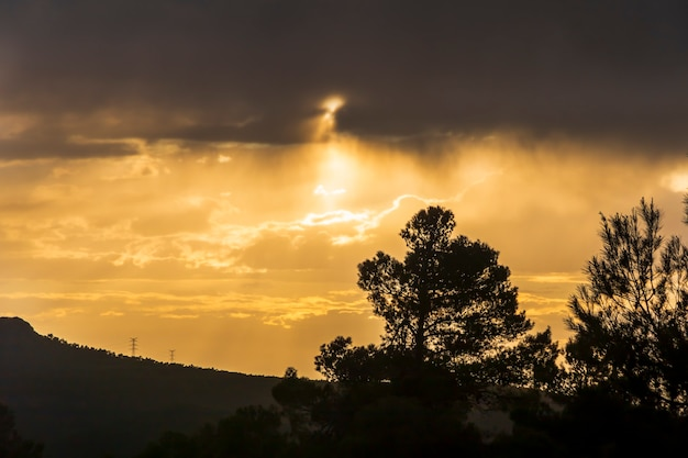 Zonsondergang in de bergen tussen de dennen op een dag met wolken.