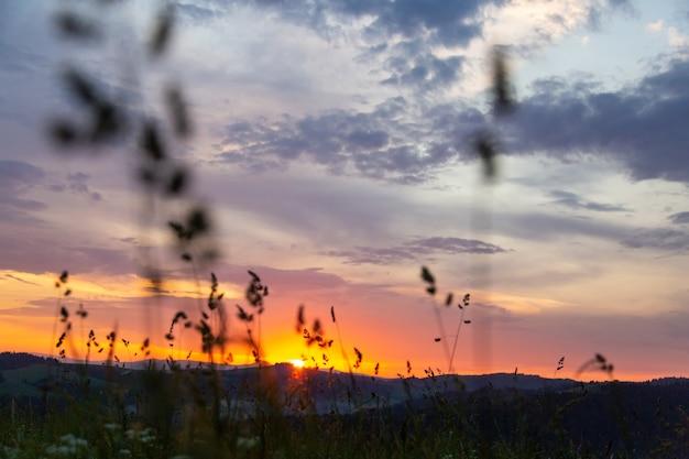 Zonsondergang in de bergen van de karpaten.