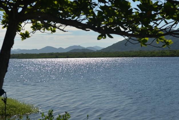 Zonsondergang in de rivier op het eiland cardoso in de staat sao paulo.
