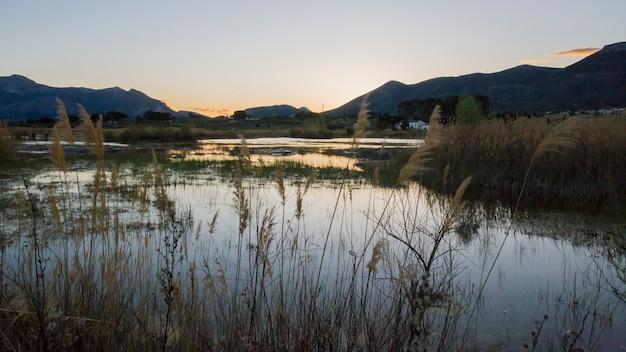 Zonsondergang in het moeras van