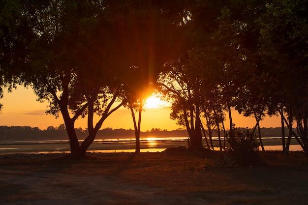 Zonsondergang lichte stralen die door de bomen op het meer doordringen