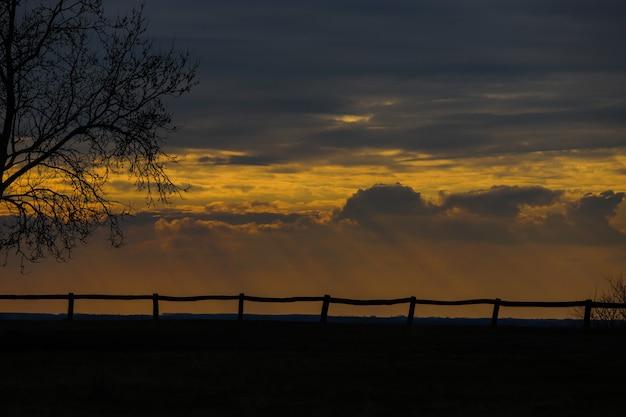 Zonsondergang met bladerloze takken en een houten hek