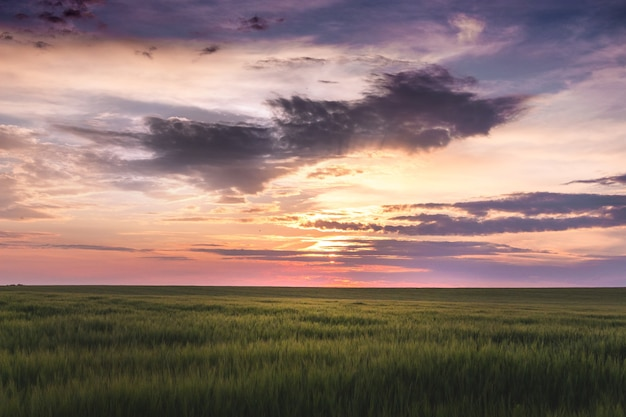 Zonsondergang met donkere wolken boven een veld met gras