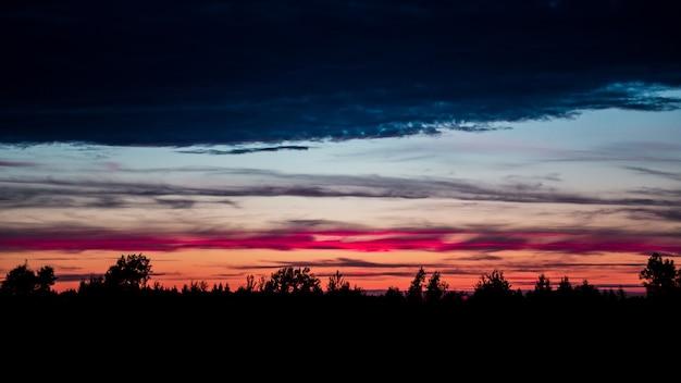 Zonsondergang met het silhouet van het bos