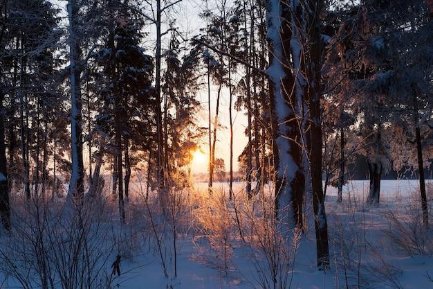 Zonsondergang met oranje tinten in het winterseizoen
