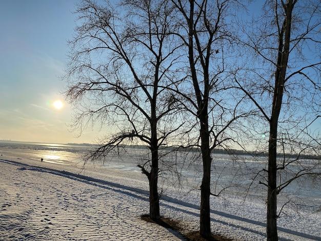 Zonsondergang op de bevroren rivier de wolga. er zijn drie bomen op de besneeuwde kust op de voorgrond. in de verte op het ijs silhouet van een man.