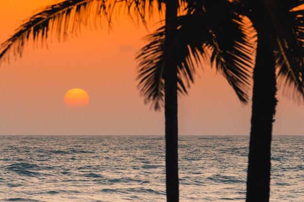 Zonsondergang op het strand met kokospalm.