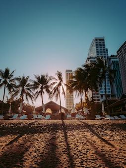 Zonsondergang op het strand van miami met palmbomen