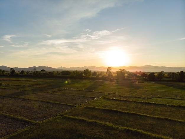 Zonsondergang op rijst veld