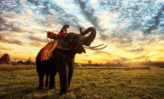 Zonsondergang thais platteland in thailand