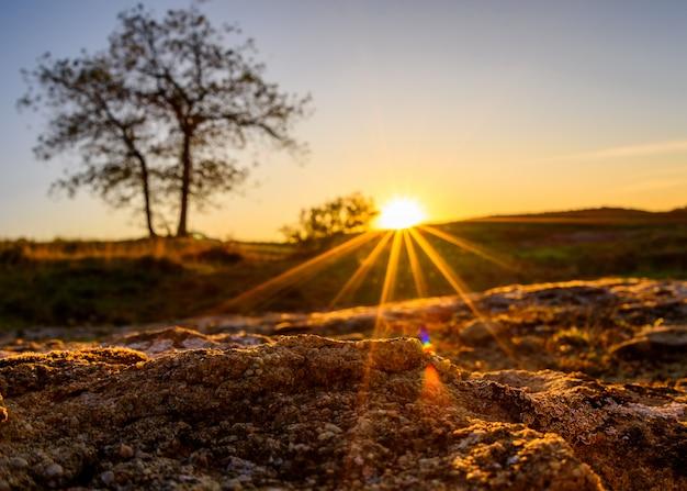 Zonsonderganglandschap in spanje met boom en zon