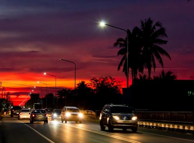 Zonsonderganglicht achter de kokospalmen en de weg.