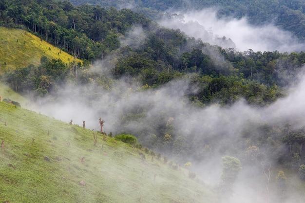 Zonsopgang bij berg met mist in mae la noi, maehongson-provincie, thailand