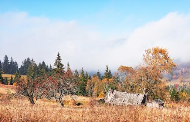 Zonsopgang boven de mistige vallei van de hoge berg met oude houten huizen op een heuvel in een bergbos.
