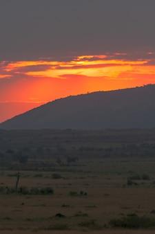 Zonsopgang in de wolken. savanne van masai mara, kenia