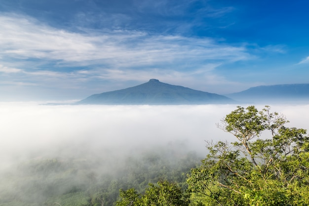 Zonsopgang met de mist mooi landschap om te ontspannen in thailand
