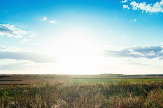 Zonsopgang of zonsondergang op gecultiveerd land op het platteland met bewolkte hemelachtergrond. landschapsachtergrond met exemplaarruimte.
