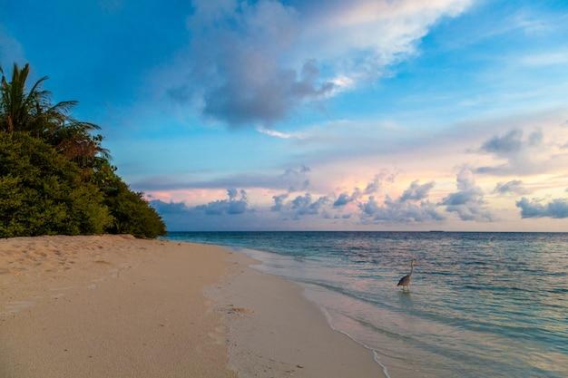 Zonsopgang op het strand op een eiland in de oceaan