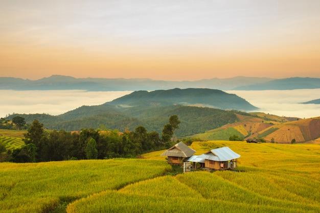 Zonsopgang op terrasvormig paddy field in mae-jam village