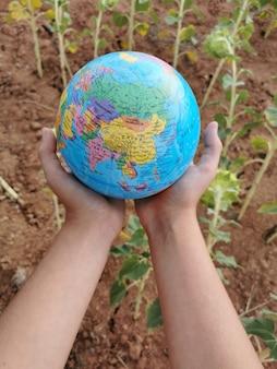 Zorgen voor de planeet de aarde natuur het ecosysteem handen oppakken van een plant