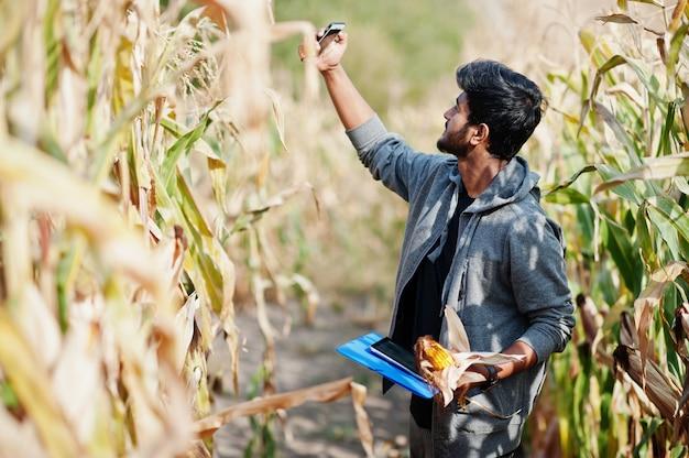 Zuid-aziatische agronoom landbouwer inspecteren maïsveld boerderij. landbouw productieconcept.