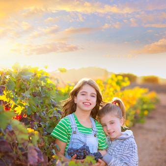 Zus kind girs boer in wijngaard oogst in de mediterrane herfst