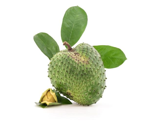 Zuurzak of annona muricata fruit, bloem en groen blad geïsoleerd op een witte achtergrond met uitknippad.