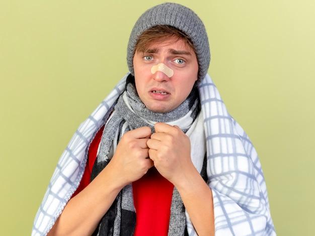 Zwakke jonge knappe blonde zieke man met muts en sjaal gewikkeld in geruite voorkant kijken met gips op neus geïsoleerd op olijfgroene muur