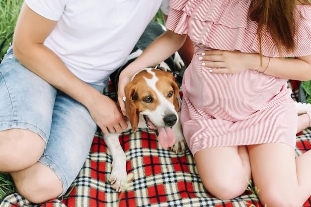 Zwangere vrouw met man en een grappig hondenfamiliepaar wachtend op baby