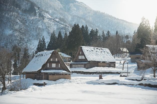Zware sneeuwval in met extreme winter bedekte bomen, huizen en paden