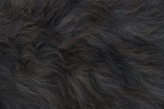 Zwart dierlijk haar